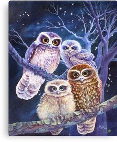 Boobook Owl Family Canvas Print