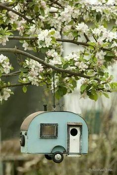 Traveling bird house