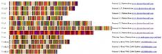Doctor Who Scarf Pattern | ... steam on my inspired by scarf project this is the scarf that doesn t