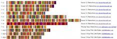 http://www.timey-wimey.com/blog/wp-content/uploads/2013/03/scarf-o-meter-1024x342.jpg