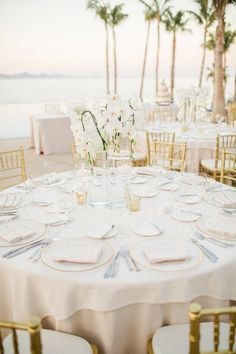Paradise Found: Romantic Tropical Wedding in Mexico