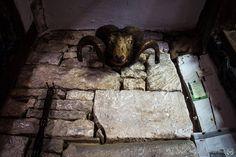 Ancient Ram Inn 24-DR