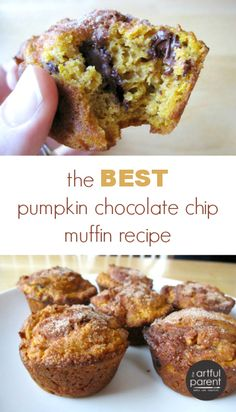 The Best Pumpkin Chocolate Chip Muffin Recipe