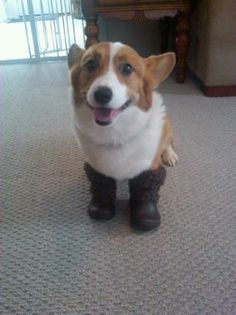 These boots were made for walking...