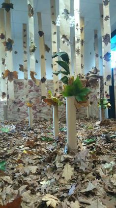 Reggio Emilia, Learning Centers, Early Learning, Educational Activities For Kids, Autumn Activities, Early Childhood Education, Projects For Kids, Ideas Para, Play Therapy