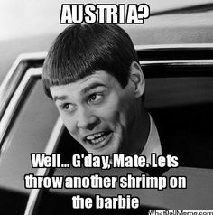 Image result for dumb and dumber austria quote