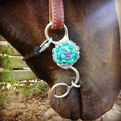 Klu bits Bling Horse Tack, Western Horse Tack, Western Saddles, Horse Saddles, Horse Boots, My Horse, Bits For Horses, Bit Box, Barrel Racing Tack