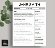 one page resume template cv template for ms word by cocoresumes - One Page Resume Template Word