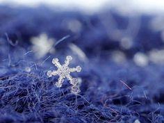 Lähikuvia pakkaspäivän täydellisistä lumihiutaleista.