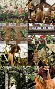 Harry Potter Aesthetics  chamberofaesthetics Dedicated Herbology students take care of the plants in the summer.