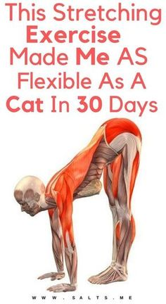 Health and fitness, can't adhere to fixed workout, which in time takes a negative turn. So, do you want of that health fitness inspiration? Then check this important pin number 6787397230 today. Fitness Workouts, Yoga Fitness, Senior Fitness, Physical Fitness, Fitness Diet, At Home Workouts, Health Fitness, Yoga Workouts, Fitness Games