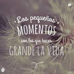 Easy healthy breakfast ideas on the good day song The Words, Mr Wonderful, Good Day Song, Teacher Quotes, Lettering, Statements, Spanish Quotes, Paphos, Sentences