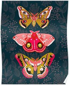Lepidoptery No. 4 by Andrea Lauren Art Print by Andrea Lauren Design - X-Small Illustration Papillon, Illustration Art, Butterfly Illustration, Art Papillon, Posca Art, Andrea Lauren, Butterfly Art, Butterflies, Butterfly Gifts