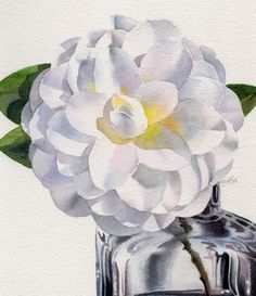 Barbara Fox - Daily Paintings: SERENDIPITY and a fat white Camellia watercolor painting
