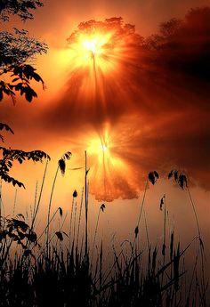 lori-rocks:        «The Fog Star» by Anton Petrus ~edit via ~Lori