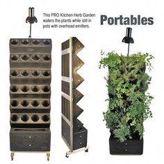 Kitchen Herb Garden with Irrigiation - use this as inspiration to build a wall garden Verticle Garden, Vertical Garden Wall, Herb Garden In Kitchen, Diy Herb Garden, Kitchen Herbs, Herbs Garden, Culture D'herbes, Indoor Greenhouse, Pinterest Garden