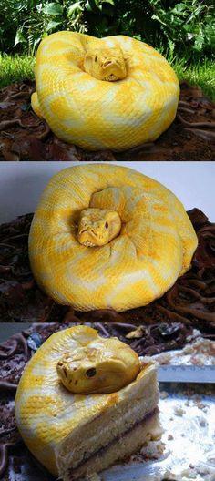 Albino Anaconda Cake