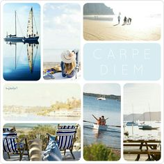 Carpe Diem, happy World Oceans Day! #moodboard #mosaic #collage #inspirationboard #byJeetje ♡