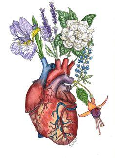 Giclee Print- 'Vascular Vase' Anatomical Watercolor Painting of Heart and Flowers Posca Art, Heart Painting, Medical Art, Anatomy Art, Illustration, Heart Art, Art Sketchbook, Collage Art, Art Inspo