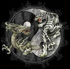 Simbología China: Dragón y Tigre : *************************    La relación entre los símbolos del tigre y el dragón va íntimamente relacionado con la cultura y mitología chinas y con una de sus grandes doctrinas, la teoría del Yin y el Yang del TAO budista, el tigre y el dragón representan la dualidad y son emblemas del horóscopo chino, pero vayamos por partes...  El tigre y el dragón eran considerados y ...