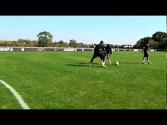 Some Awesome Soccer Drills You Can Use for You and Your Team. Check out the Video