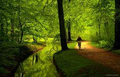 Munchen   Flickr - Photo Sharing!