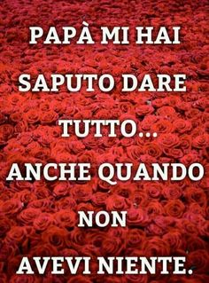 Verona, Papi, Ely, Anna, Messages, Mother Teresa, Photos, Quote, Life