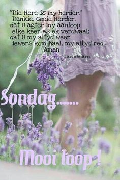 Lekker Dag, Goeie More, Afrikaans, Happy Friday, Good Morning, Sunday, Buen Dia, Domingo, Bonjour
