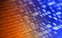 """Logran la fabricación de cinco cromosomas sintéticos de levadura.Los investigadores han logrado crear el organismo complejo con más ADN """"de diseño"""" hasta la fecha.Frankenstein es una de las novelas de ciencia ficción más célebres de la historia. La historia que imaginó Mary Shelley está un paso más cerca de hacerse realidad. Desde hace algo más de medio siglo, los investigadores persiguen el sueño de crear vida artificial, tal y como..."""