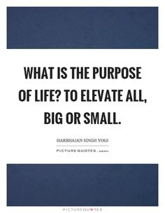 Image result for elevate quote