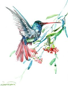 One of a kind, original watercolor painting, 14 X 11 in, Hummingbird and flowers, watercolor bird art