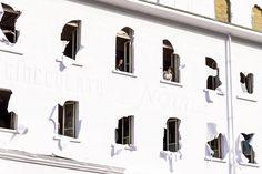 Paper Building - Fondazione La Fabbrica Del Cioccolato - Picture gallery