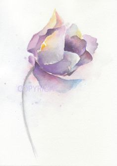 Fine art watercolor painting flower art TULIP by ChiFungW on Etsy, $16.00