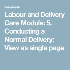 Labour and Delivery Care Module: 5. Conducting a Normal Delivery: View as single page
