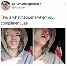 Memes memes hair color ideas for brown skin - Hair Color Ideas K Pop, Jae Day6, Young K, Funny Kpop Memes, Just Dream, Jiyong, Korean Music, Photos Du, Mamamoo