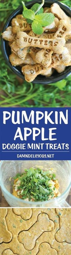 Apple Doggie Mint Treats Pumpkin apple mint dog treats are perfect for freshening bad breath in dogs. Try this homemade dog treat recipe!Pumpkin apple mint dog treats are perfect for freshening bad breath in dogs. Try this homemade dog treat recipe! Puppy Treats, Diy Dog Treats, Homemade Dog Treats, Dog Treat Recipes, Healthy Dog Treats, Dog Food Recipes, Dog Cookies, Cookies Et Biscuits, Food Dog