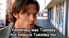 """""""Yesterday was Tuesday, but today is Tuesday too."""""""