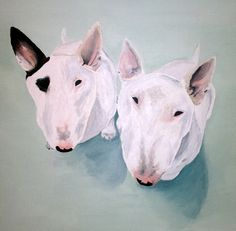 #Dog #Art by Paint it on Canvas - Portrait of #Bullterriers