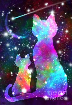 More Cosmic Cats by Nick Gustafson