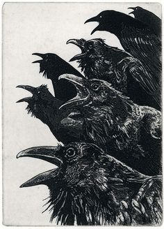 Inquisition/Ravens by Larry Vienneau: http://www.etsy.com/listing/62825801/inquisition-raven-bird-crow-series?ref=shop_home_active https://www.facebook.com/pages/Interes/262775543777291