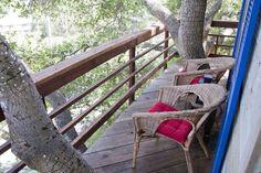 Treehouse Above San Francisco Bay! - Casas en el árbol en alquiler en Burlingame