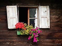 Window of an old farmhouse in Austria.  Photo by Helena Ludwig