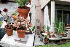 Un jardín urbano decorado con muebles recuperados  En las macetas (La Macetería), cactus y suculentas.  Foto:Living /Javier Picerno
