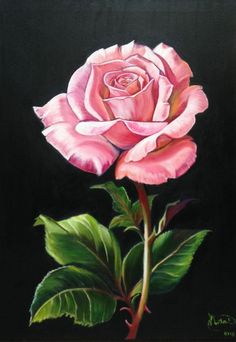 Martha Esther Ochoa oil painting – Martha Esther Ochoa Maciel – Join in the world of pin Acrylic Painting Inspiration, Acrylic Painting Canvas, Canvas Art, Watercolor Flowers, Watercolor Paintings, Rose Oil Painting, Rose Illustration, Color Pencil Art, Rose Art