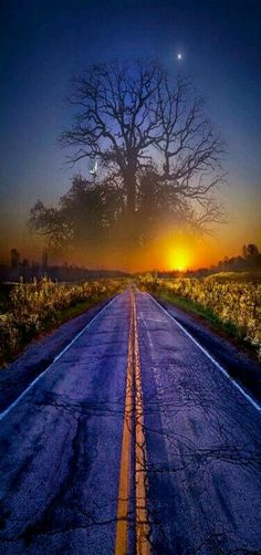 USA Road Trip Ideas and Tips. If you are looking to head out on a road trip, there are a lot of different places you could go. Below, we will be going over some of the top USA road trip Cool Pictures, Cool Photos, Beautiful Pictures, Beautiful Sunset, Beautiful World, Foto Nature, What Dreams May Come, Amazing Nature, Beautiful Landscapes