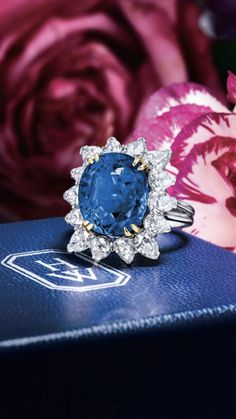 Blue Sapphire, Sapphire Rings, Jewlery, Jewelry Necklaces, Harry Winston, Blue Green, Pearls, Pretty, Diamonds