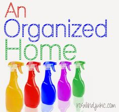 An Organized Home - 20 Days to an Organized Home
