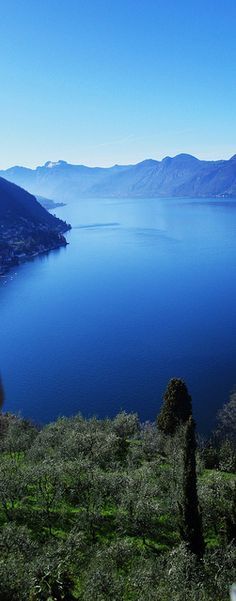 Varenna, Lake Como, Italy ... one of the best restaurants I've ever eaten at was in Varenna...gorgeous spot !