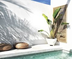 Bauwerk Colour Lime Paint - Slightly Garden Obsessed Mon Palmer Deck Outdoor Areas, Outdoor Pool, Exterior Design, Interior And Exterior, Terrazas Chill Out, Mini Pool, Cool Pools, Pool Houses, Pool Designs