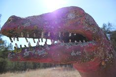 Dinosaur World   Abandoned Arkansas